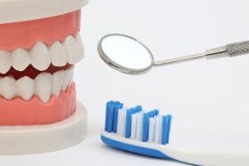 Eine Profesionelle Zahnreinigung darf nur vom Zahnarzt oder fachpersonal durchgeführt werden.
